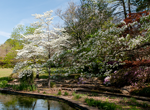 Jasmine Hill Pond